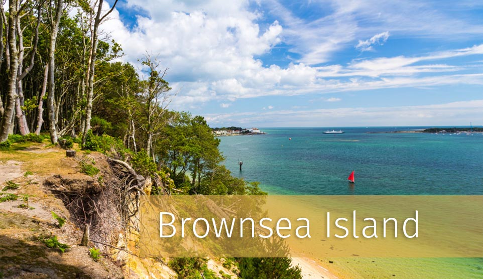 Things to do in Dorset - Brownsea Island